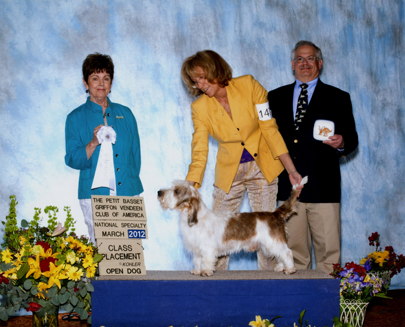 National Dog Show Raleigh